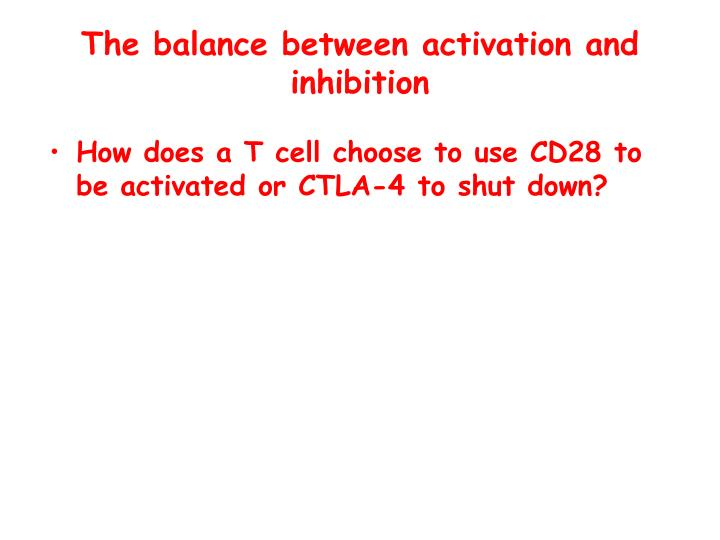The balance between activation and inhibition