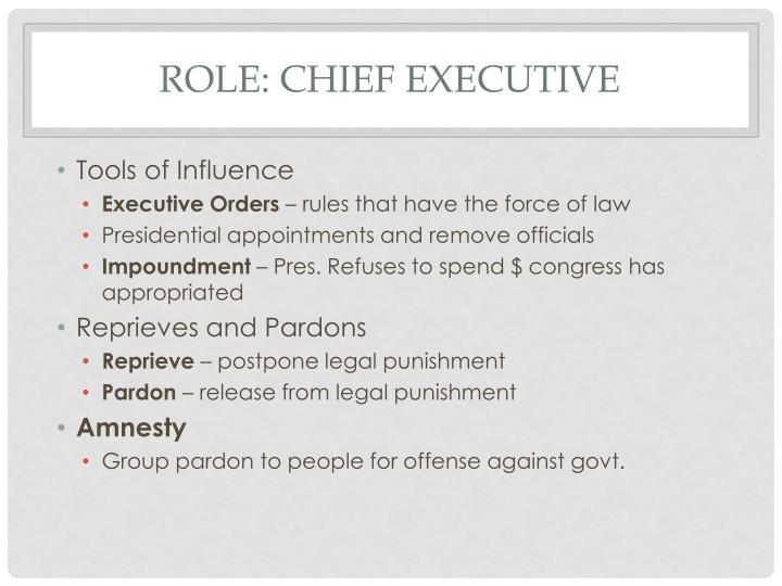 Role: Chief Executive