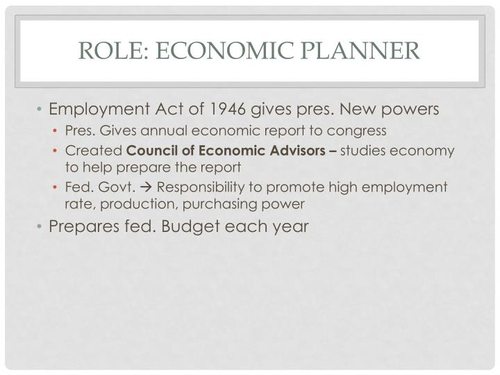 Role: Economic Planner