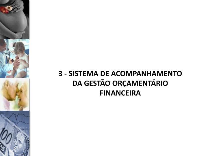 3 - SISTEMA DE ACOMPANHAMENTO