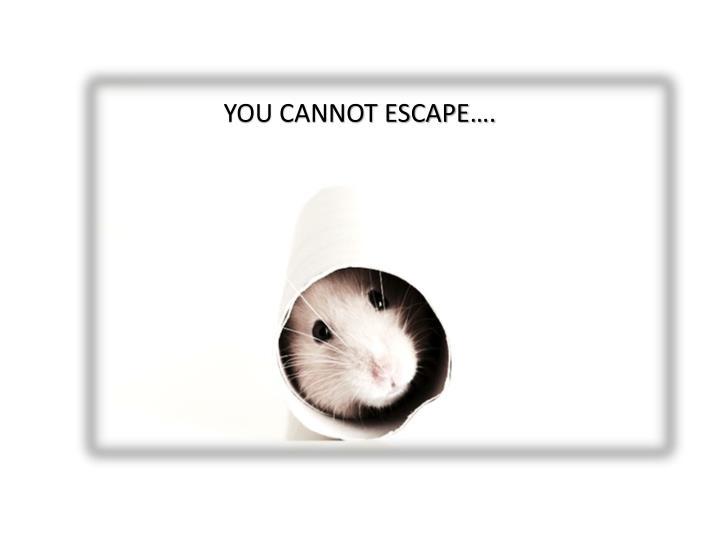 YOU CANNOT ESCAPE….