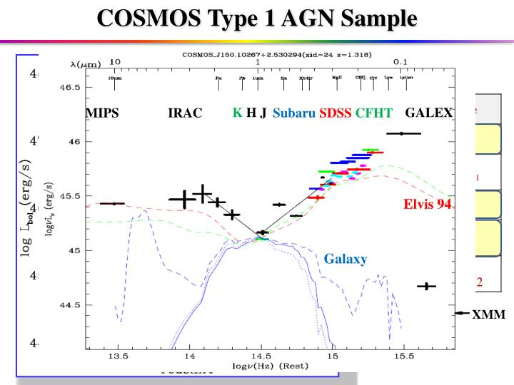 COSMOS Type 1 AGN Sample