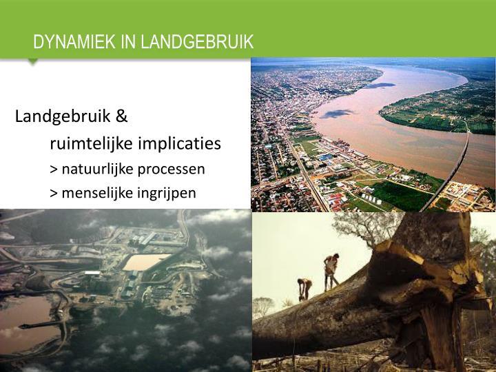 Dynamiek in landgebruik1