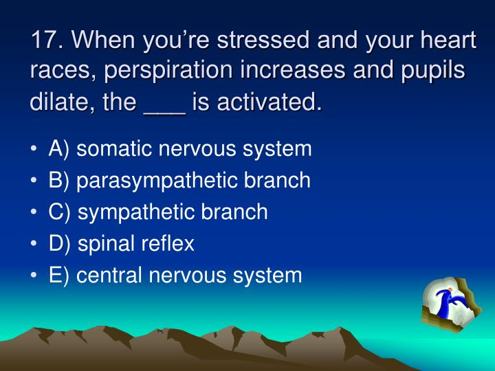 17. When you're stressed and your heart races, perspiration increases and pupils dilate, the ___ is activated.