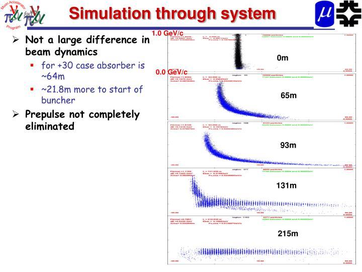 Simulation through system