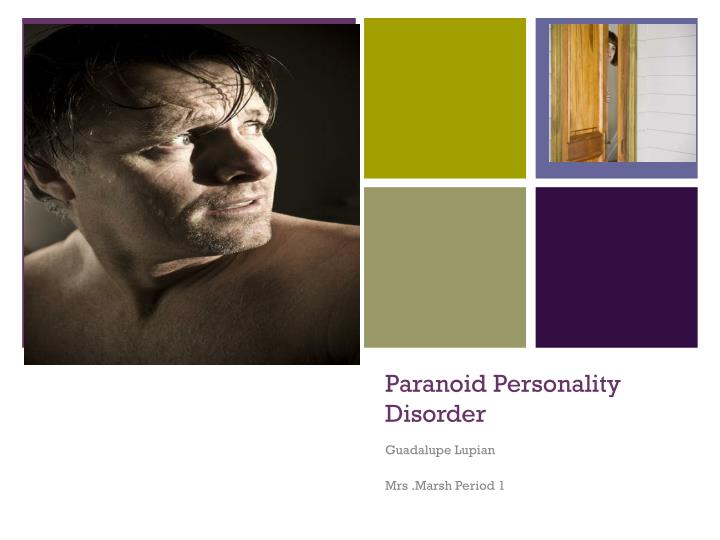 paranoid personality disorder n.