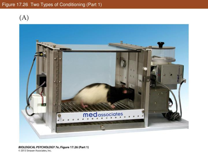 Figure 17.26  Two Types of Conditioning (Part 1)