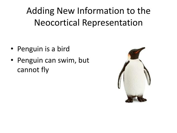 Adding New Information to the Neocortical Representation