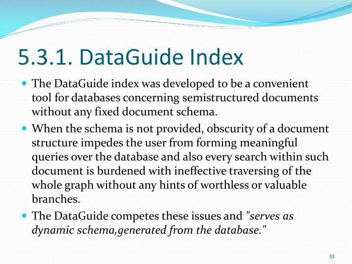 5.3.1. DataGuide Index