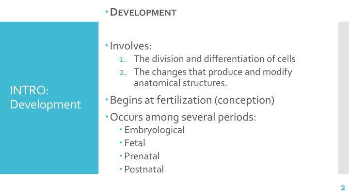 Intro development