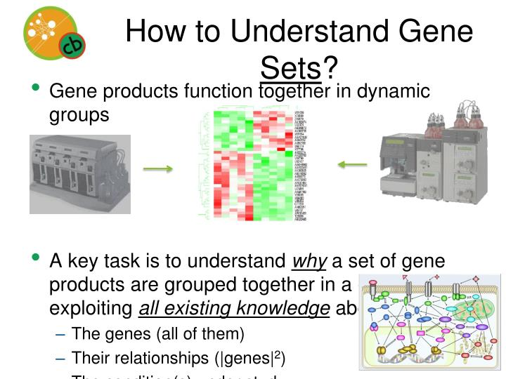 How to understand gene sets