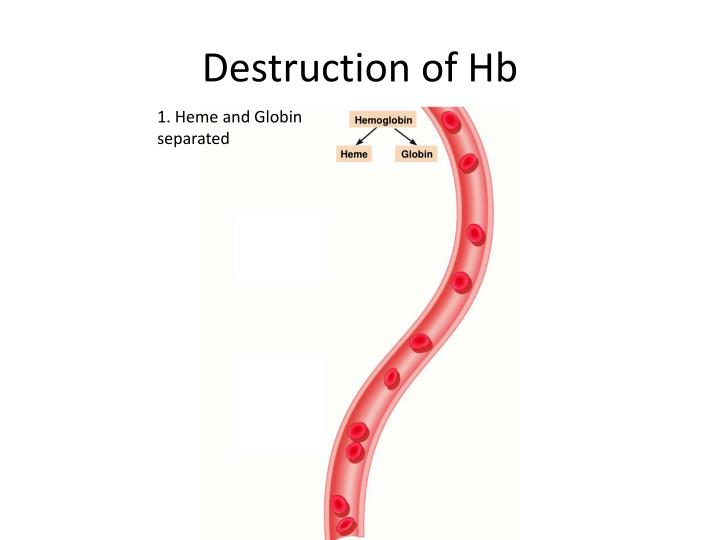 Destruction of