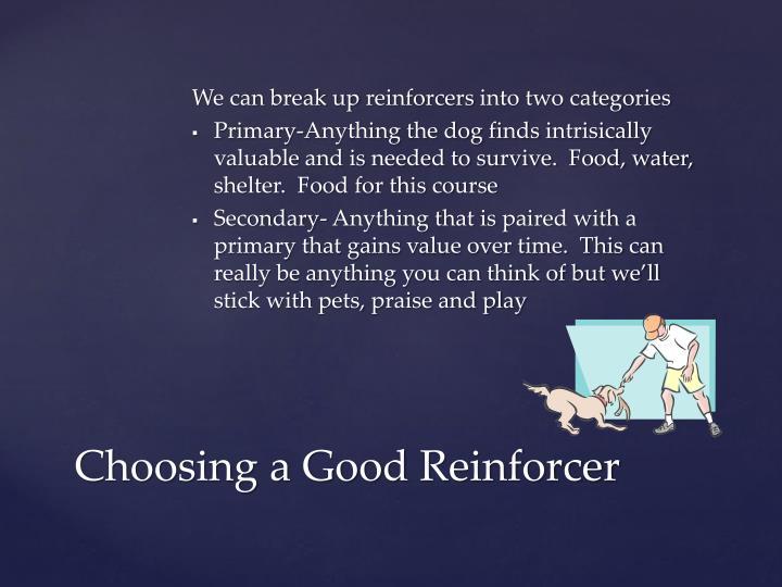 Choosing a good reinforcer1