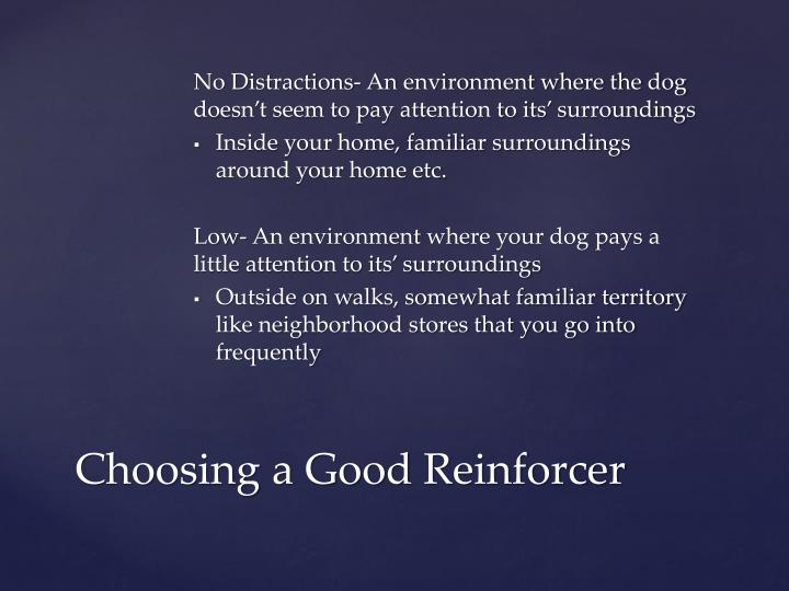 No Distractions- An environment where the dog doesn't seem to pay attention to its' surroundings