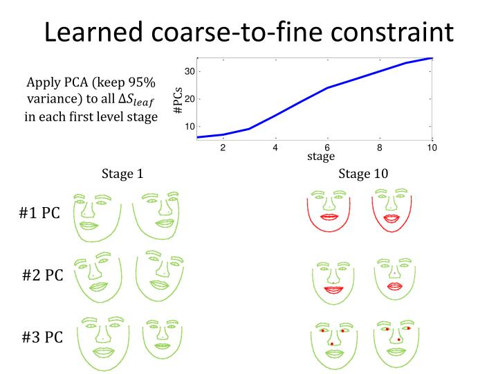 Learned coarse-to-fine constraint