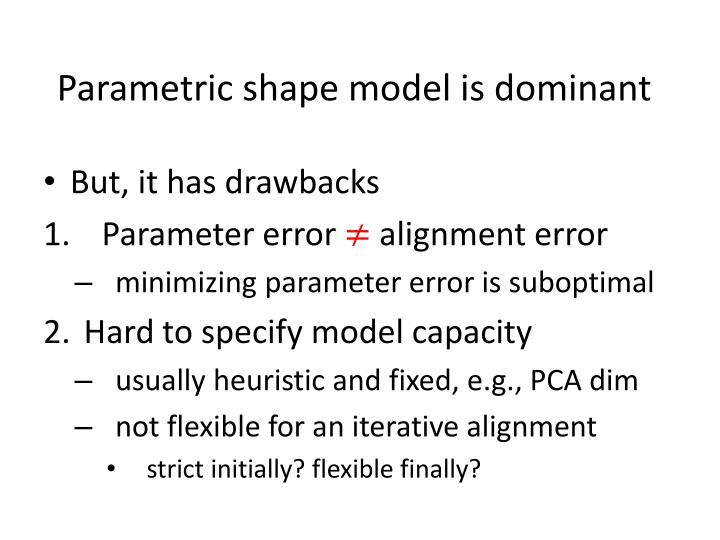Parametric shape model is dominant