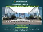 national strategic plan some notes on prioritisation and drafting process