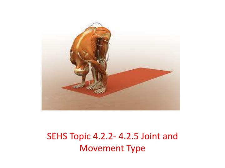 Sehs topic 4 2 2 4 2 5 joint and movement type