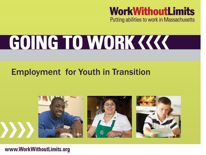employment for youth in transition n.