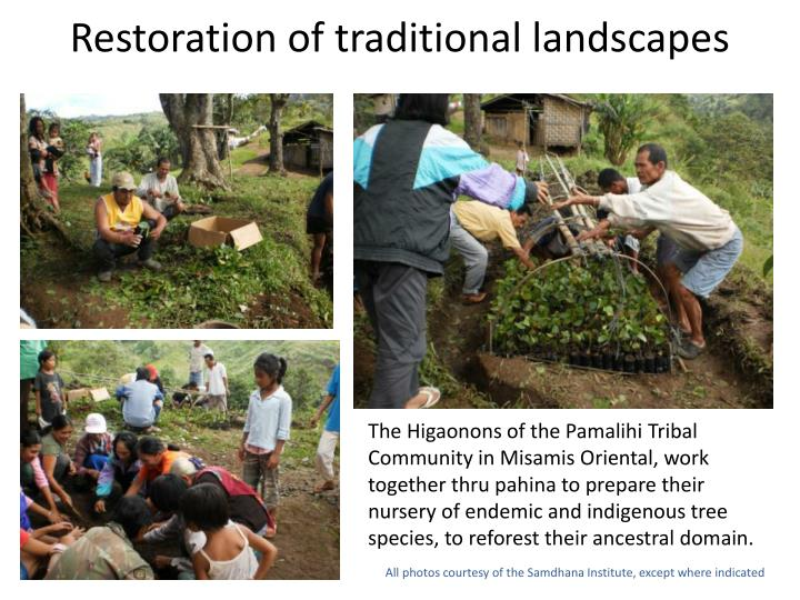 Restoration of traditional landscapes