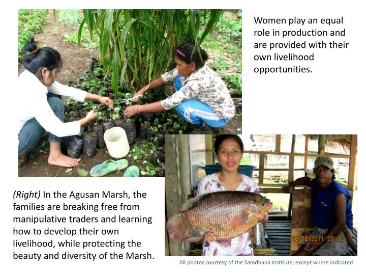 Women play an equal role in production and are provided with their own livelihood opportunities.