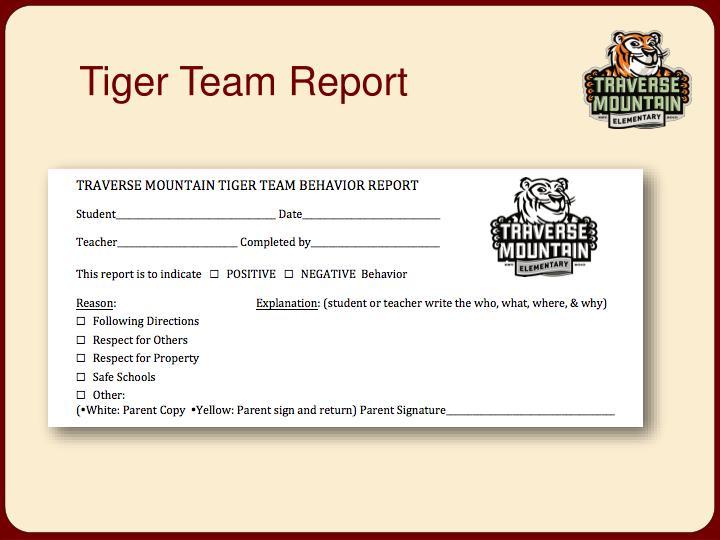Tiger Team Report