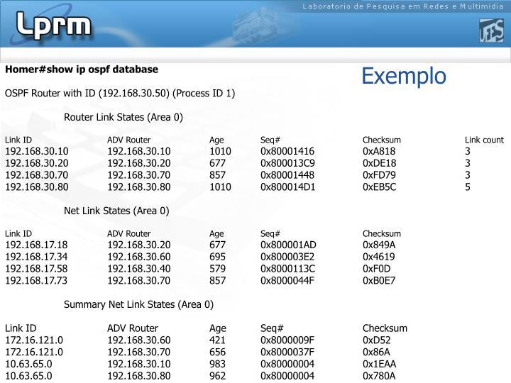 Homer#show ip ospf database