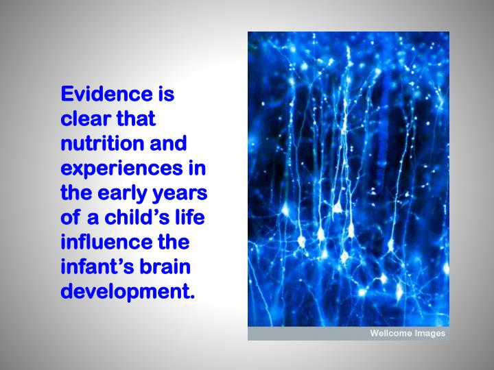 Evidence is clear that nutrition and experiences in the early years of a child's life influence the infant's brain development.