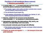functions of cell membrane plasma membrane 1 selective permeability