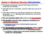 section a membrane structure introduction