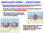 specific proteins facilitate passive transport