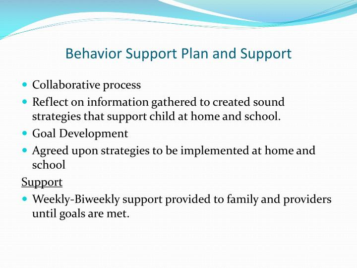 Behavior Support Plan and Support