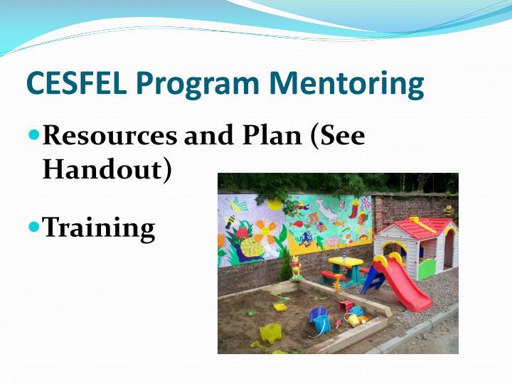CESFEL Program Mentoring