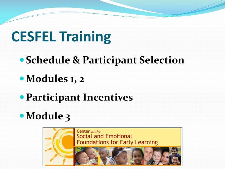 CESFEL Training