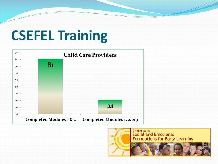 CSEFEL Training