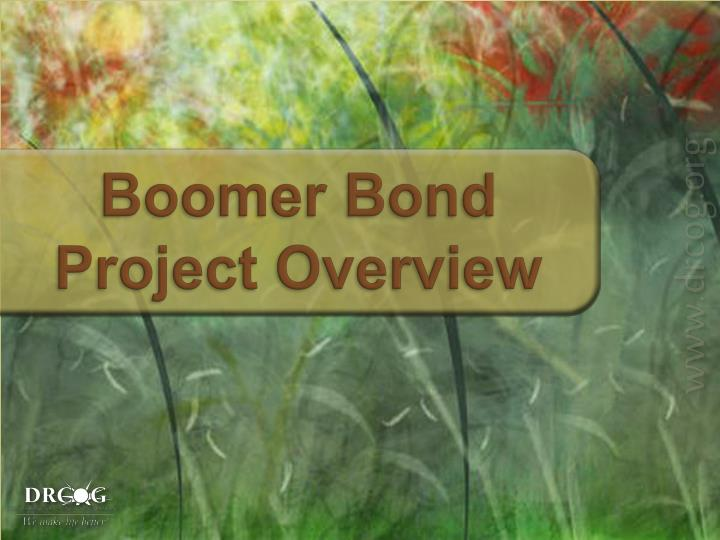Boomer Bond Project Overview