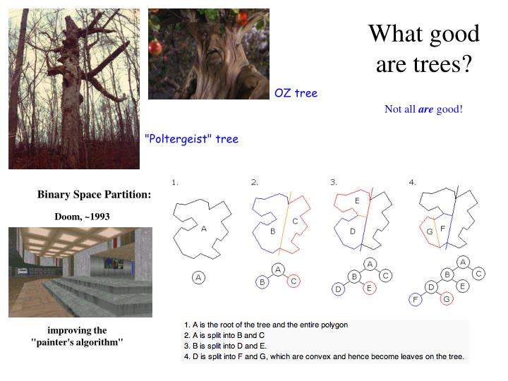 What good are trees?