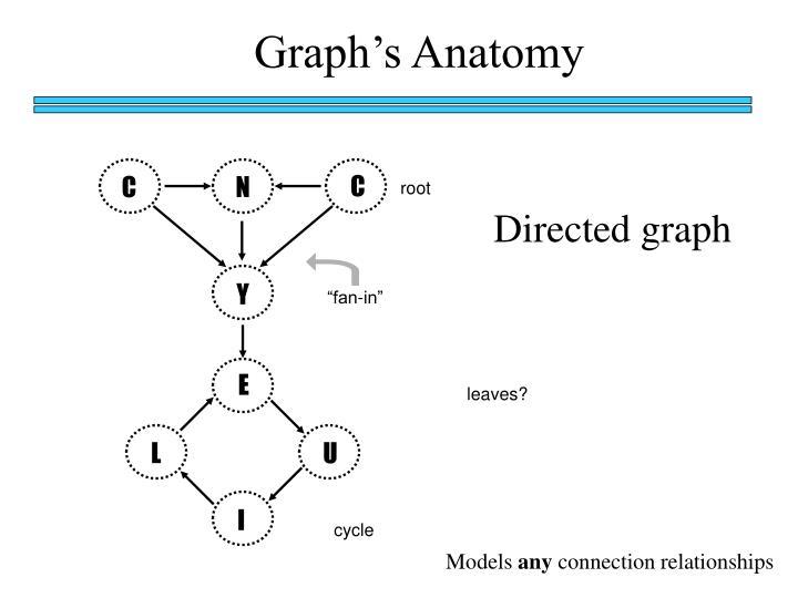 Graph's Anatomy