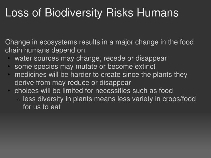 Loss of Biodiversity Risks Humans