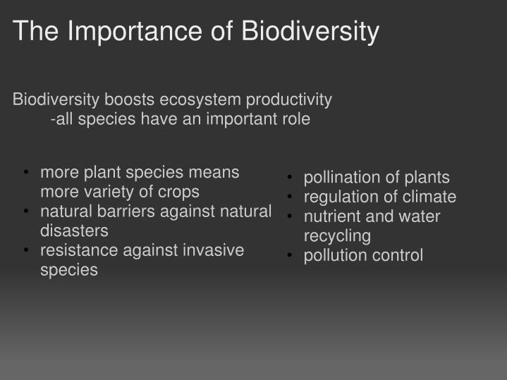 The Importance of Biodiversity