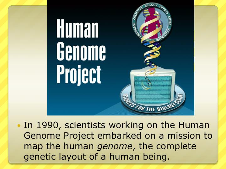 a view on the humane genome project The cathlic church has not made any formal statements about the human genome project as such but the present pope, john paul ii, has commented, albeit very briefly, on various aspects of genetic manipulation genetic interventions which are therapeutic (eg gene therapy), namely, directed to the.