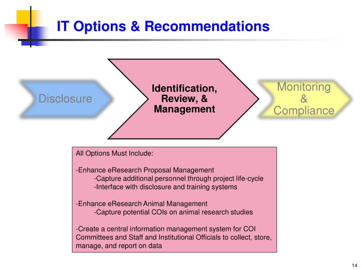 IT Options & Recommendations