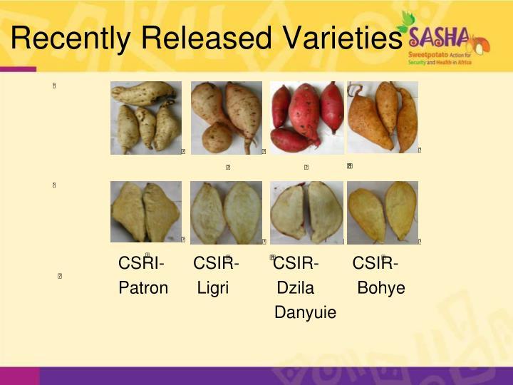 Recently Released Varieties