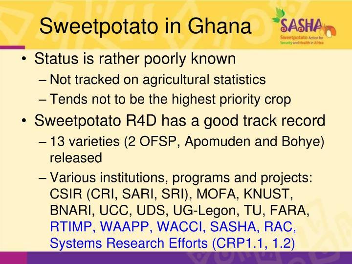 Sweetpotato in ghana