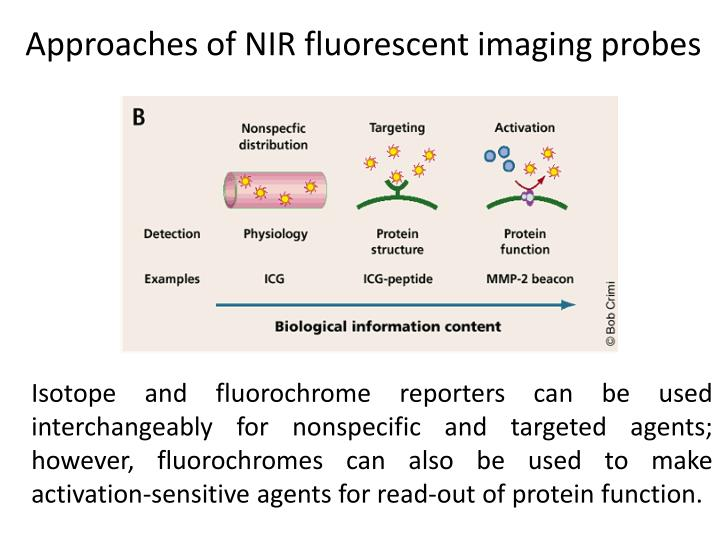 Approaches of NIR fluorescent imaging probes
