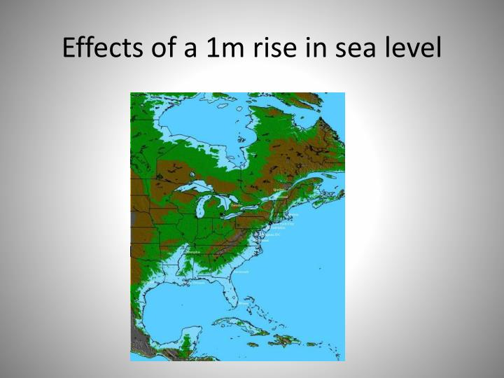 Effects of a 1m rise in sea level