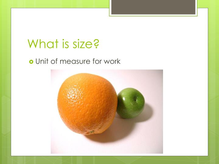What is size