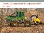 timber management plan implementation impacts