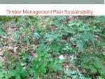 timber management plan sustainability