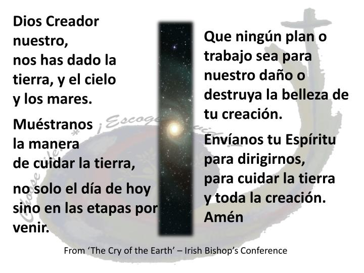 From 'The Cry of the Earth' – Irish Bishop's Conference